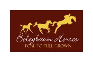Irish_Breeders_Classic_Sponsor_Boleybawn_Horses