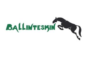 IBC Supporter - Ballinteskin