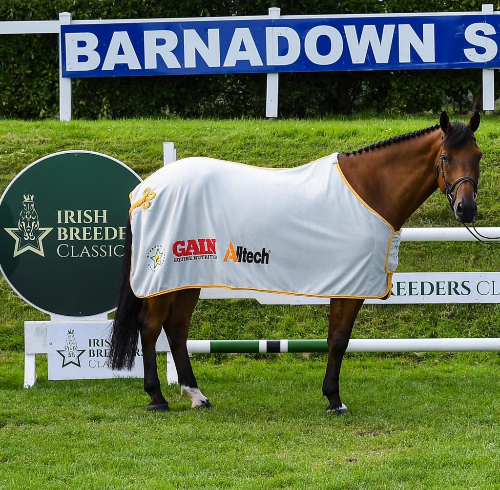Show Jumping at Barnadown
